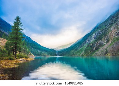 Wonderful mountain lake. Amazing huge mountains with conifer forest. Larch tree on water edge. Morning foggy landscape of majestic nature of highlands. Sunny misty mountainscape. Sunlight through fog.