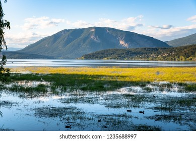 Wonderful Mountain Scenery with a Lake and Marshland in Foreground at Sunset, Salmon Arm, BC, Canada.