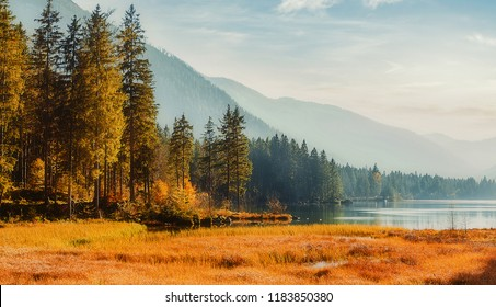 Wonderful nature background. Awesome sunny landscape in the mountains. Majestic Pine trees under sunlit. fantastic alpine highlands with amazing lake in sunset. Beauty in the world.