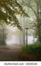 Wonderful part of a park on a misty morning during fall.