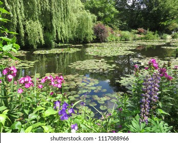 The wonderful pound with a lot of water lilies in the amazing garden of Monet in Giverny. All around the water the flowers and the trees are luxurious.