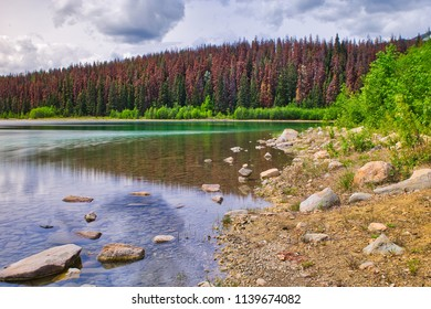 A wonderful relaxing shoreline of a beautiful lake. Nice reflection and beautiful colors.