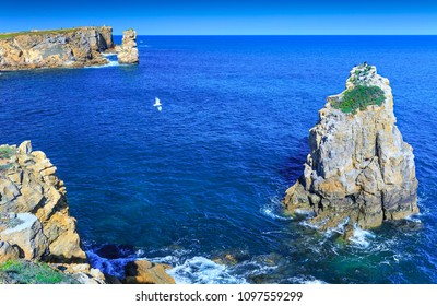 Wonderful romantic afternoon seascape. Sea birds cormorants resting on a rock. Coastline cliffs of the Atlantic ocean in Peniche. West coast of Portugal at sunny weather.