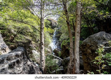 Wonderful Salmon Creek Falls on a warm day, shaded by giant oak & cypress trees along the water's edge. Photographed near Highway 1, on the Big Sur coastline, California Central Coast, CA.