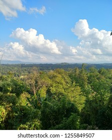 Wonderful scenery at Mizoram,Top peak View