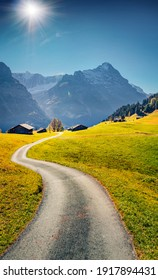 Wonderful summer view of Grindelwald village valley with old country road. Spectacular morning scene of Bernese Oberland Alps, Switzerland, Europe. Beauty of countryside concept background.