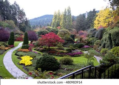 Wonderful Sunken Garden in The Butchart Gardens,Victoria,Canada 2. Photo taken 2015.10.25 at The Butchart Gardens,Victoria,BC Canada.