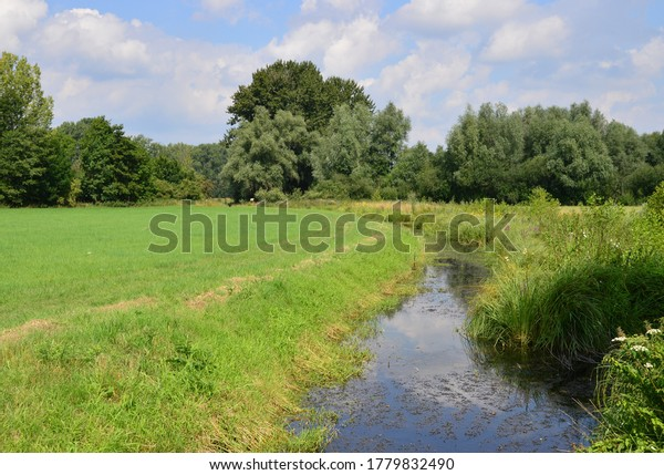 wonderful-sunny-landscape-germany-600w-1