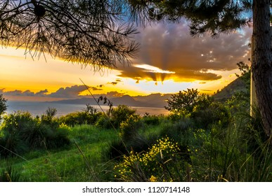 A wonderful sunset on in the Bay of Maratea and yellow flowering broom in June.
