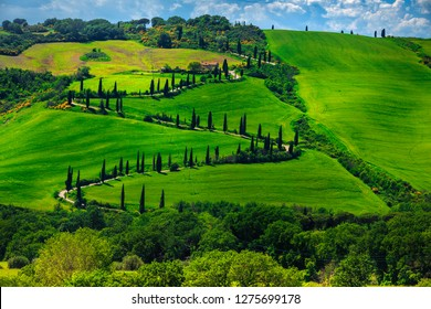 Wonderful travel and photography destination in Tuscany. Famous winding rural road near Montepulciano, Tuscany, Italy, Europe