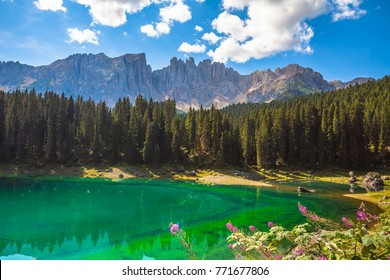 Wonderful view of crystal clear water in the lake overwhelming green. Rocky mountain. Spruce forest. Lake Carezza, Dolomites, Italy