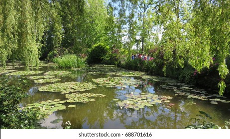 A Wonderful view of the small lake in Claude Monet's house. The Water lilies in Claude Monet's garden in Giverny. There are some beautiful weeping willow trees.
