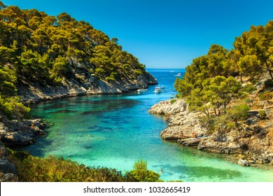 Wonderful viewpoint from the forest, Calanques De Port Pin bay, Calanques National Park near Cassis fishing village, Provence, South France, Europe