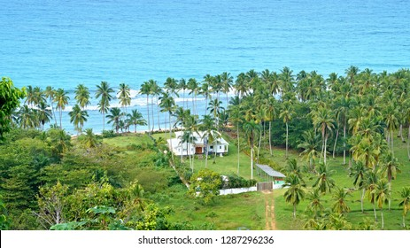 Wonderfull white house in the middle of palm grove on the beach Coson, Samana Peninsula, Dominican Republic - 8th January 2018
