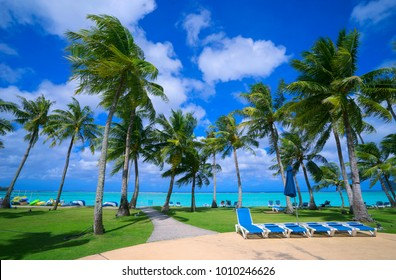 A wonderfully landscaped hotel resort with palm trees, sunbath, beach and swimming pool. Tumon, Guam.