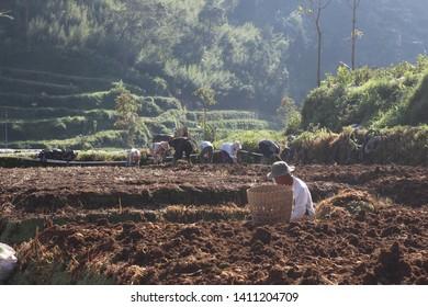 Abundant Resources Images, Stock Photos & Vectors   Shutterstock