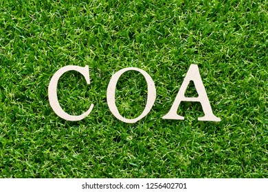 Wood alphabet in word COA (abbreviation of certificate of analysis, certificate of authenticity, cause of action) on artificial green grass background