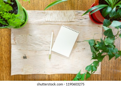 Wood background bordered by potted houseplants  with pencil and small blank sketch pad for copy space. Setting in natural daylight.