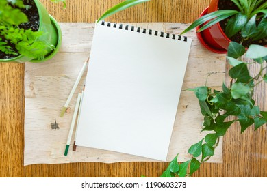Wood background bordered by potted houseplants shot from above with room for copy space on blank sketch pad with three coloured art pencils. Setting in natural daylight.