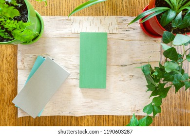 Wood background bordered by potted houseplants shot from above with room for copy space. Setting in natural daylight. Blank space on canvas covered notebooks on flattened birch bark.