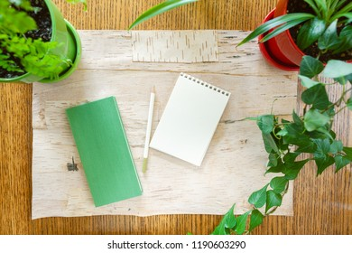 Wood background bordered by potted houseplants shot from above with room for copy space. Setting in natural daylight. Note pad and sketch pad with blank space and a gren coloured pencil.