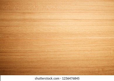 Wood background for design and decoration. Wood texture.