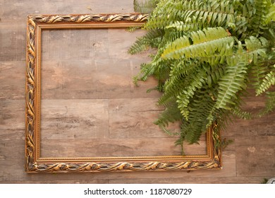 Wood background in a frame with palm leaves