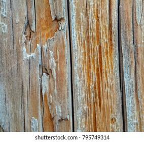 Wood background macro