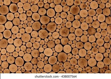 Wood background. Wood teak stump background