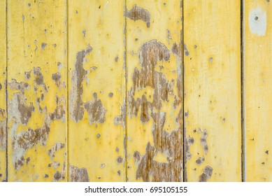 The wood background and texture.