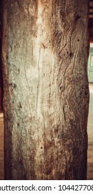 Wood background texture, vintage board, rustic wood surface, rough tree