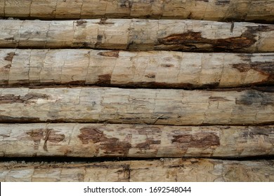 Wood background vintage wall texture