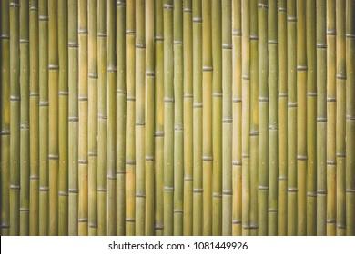Wood bamboo fence pattern