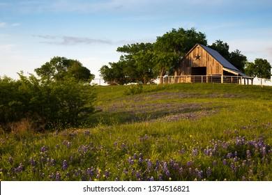Wood Barn on the Bluebonnet Trail Near Ennis , Texas