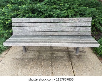 wood bench on grey cement slab with green bush