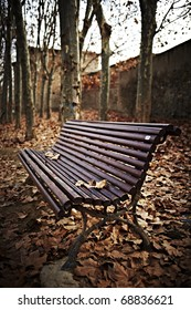 Wood bench outdoors on a winter autumn day. Warm light makes all the fallen dead leaves shine with a reddish and yellowish color.