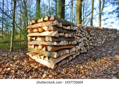 Wood billets piled up neatly in the forest