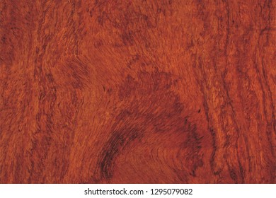 Wood board texture and natural trending background pattern and concept for wood, grain, natural oak, wood background, real natural, texture, rustic oak panel, background, oak, pine, seamless