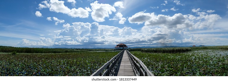 Wood Boardwalk at Bueng Bua Nature Observation Center Sam Roi Yot National Park. panoramic view