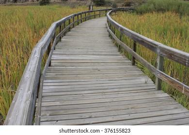 Wood Boardwalk at the estuary