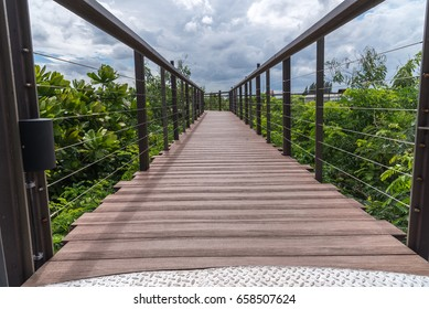 Wood bridge into the forest