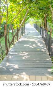Wood bridge with trees.