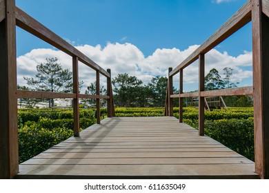 Wood bridge in Valley of love, Dalat, South of Vietnam