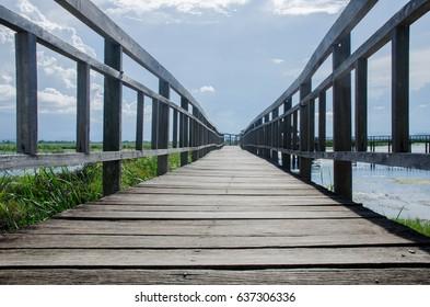 Wood bridge The way