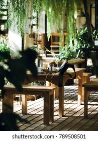 Wood chair in green garden on wood floor under shadow of tree