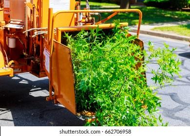 Wood Chipper Images, Stock Photos & Vectors | Shutterstock