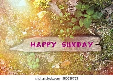 happy sunday images stock photos vectors shutterstock