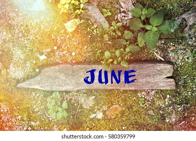 Wood concept with the word June