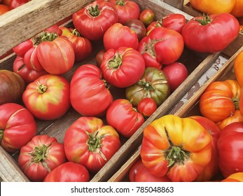 Wood crates of heirloom tomatoes are for sale at a local weekly farmer's market on San Juan Island in Washington.