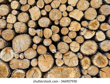Wood cut and stored to dry for making a fire when it gets cold.